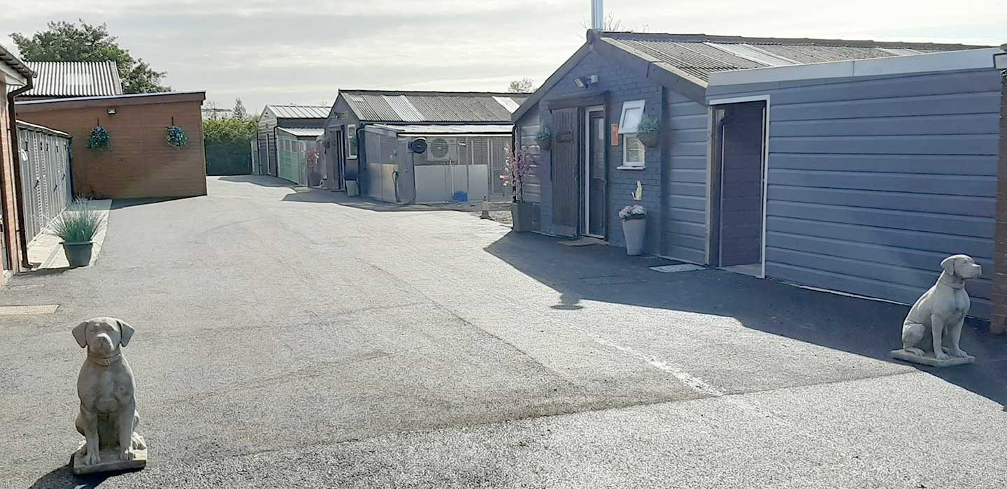Landorn Kennels & Cattery in Preston